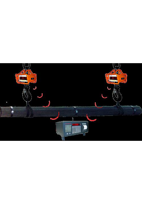 EHP Digital-Kranwaage LD / LDN mit Rammschutz als Verbundwaagensystem, eichfähig